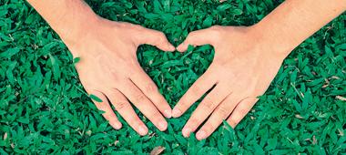 Commitment-to-reducing-environmental-impact_blog-960x430