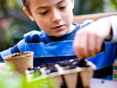 a boy potting plants