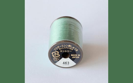 CYT463 2