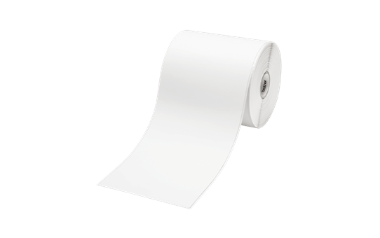 RDS01C2 - Continuous length paper label (3 pack)