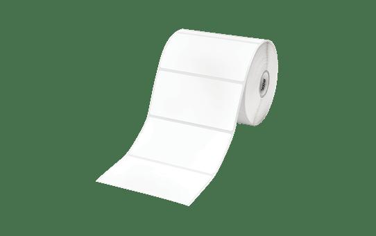 RDS03C1 - Die Cut Labels (3 pack)